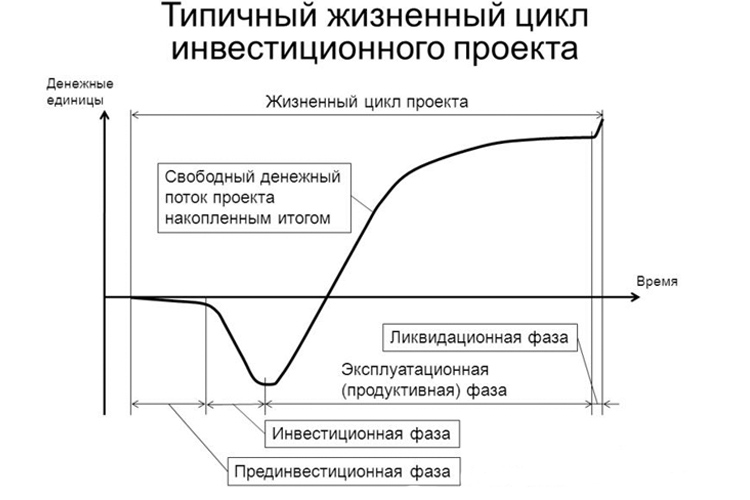 Жизненный цикл